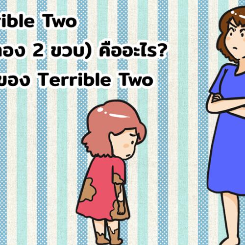 Terrible Two (วัยทอง 2 ขวบ) คืออะไร? ข้อดีของ Terrible Two