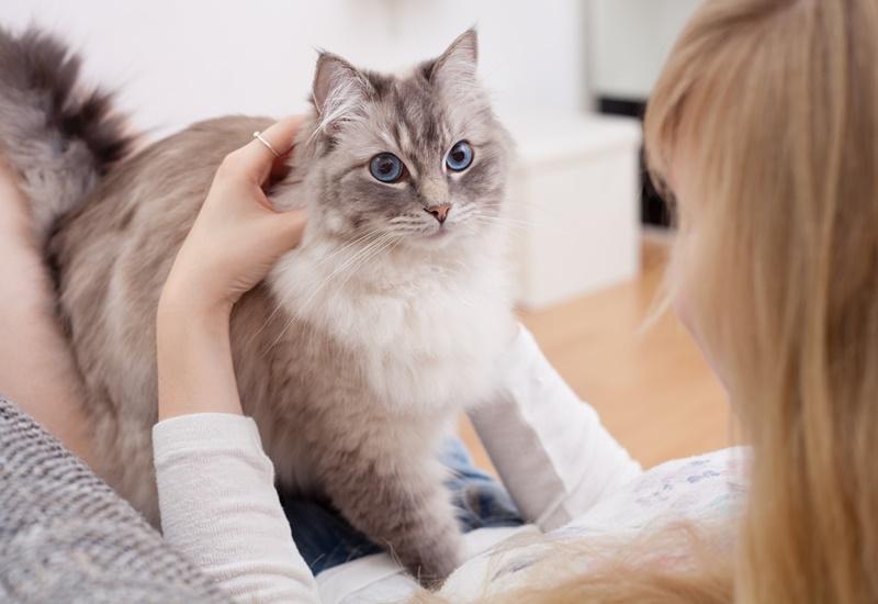 สัตว์เลี้ยงน่ารัก หรือคือพาหะนำโรคใกล้ตัว