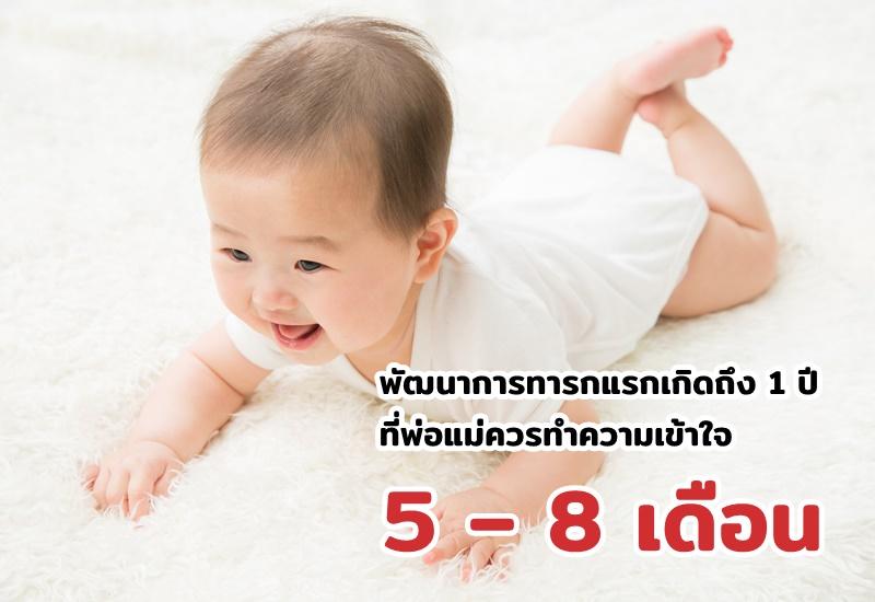 พัฒนาการทารกแรกเกิดถึง 1 ปี ที่พ่อแม่ควรทำความเข้าใจ (5 – 8 เดือน)