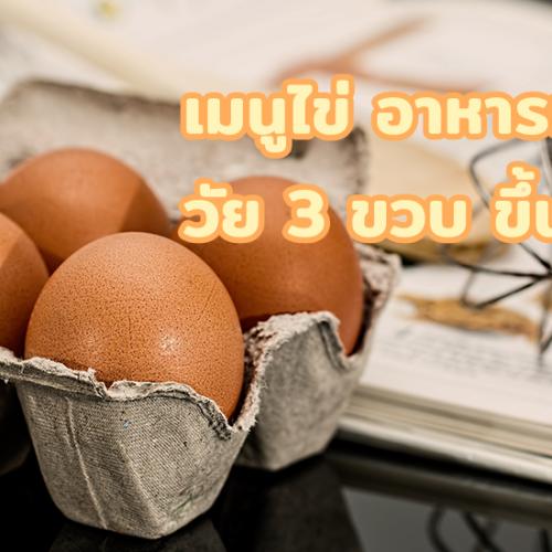 เมนูไข่ อาหารเช้า วัย 3 ขวบ ขึ้นไป