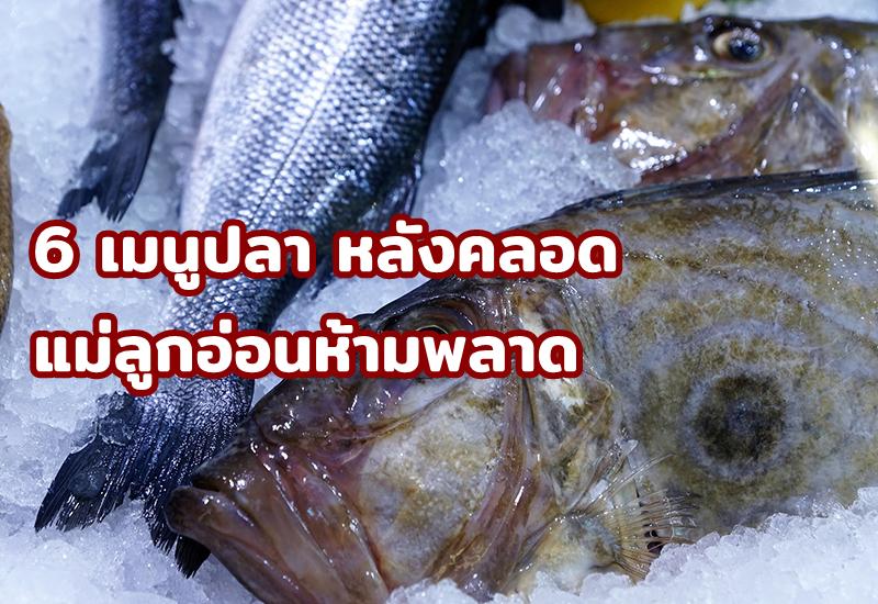 6 เมนูปลา หลังคลอด แม่ลูกอ่อนห้ามพลาด