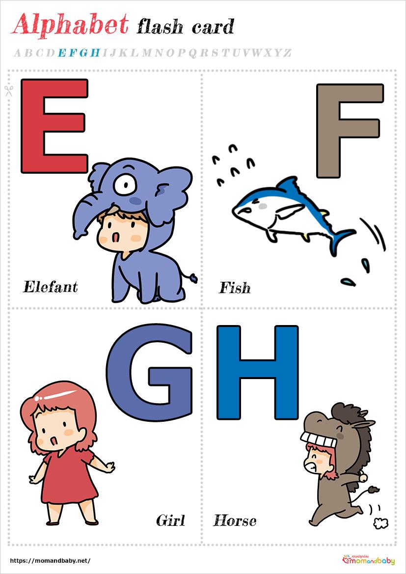 แฟลชการ์ด EFGH