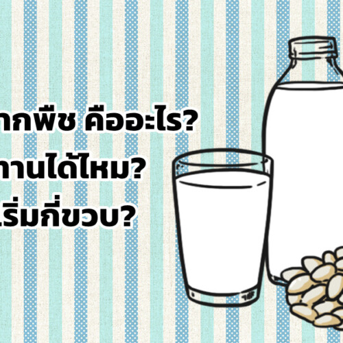นมจากพืช คืออะไร? เด็กทานได้ไหม? ควรเริ่มกี่ขวบ?